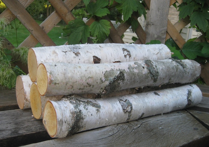5 White Birch Logs For Fireplace Decor Winter Solstice Pinterest