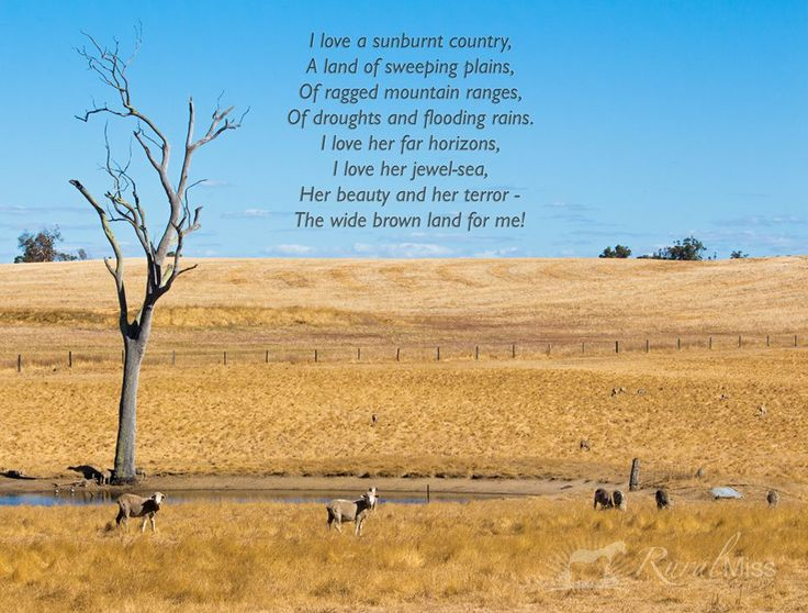 "dorothea mackellar my country essay My little bit of country essay i am australian by bruce woodley and my country by dorothea mackellar the two poems that i have chosen to analyse are ""i."