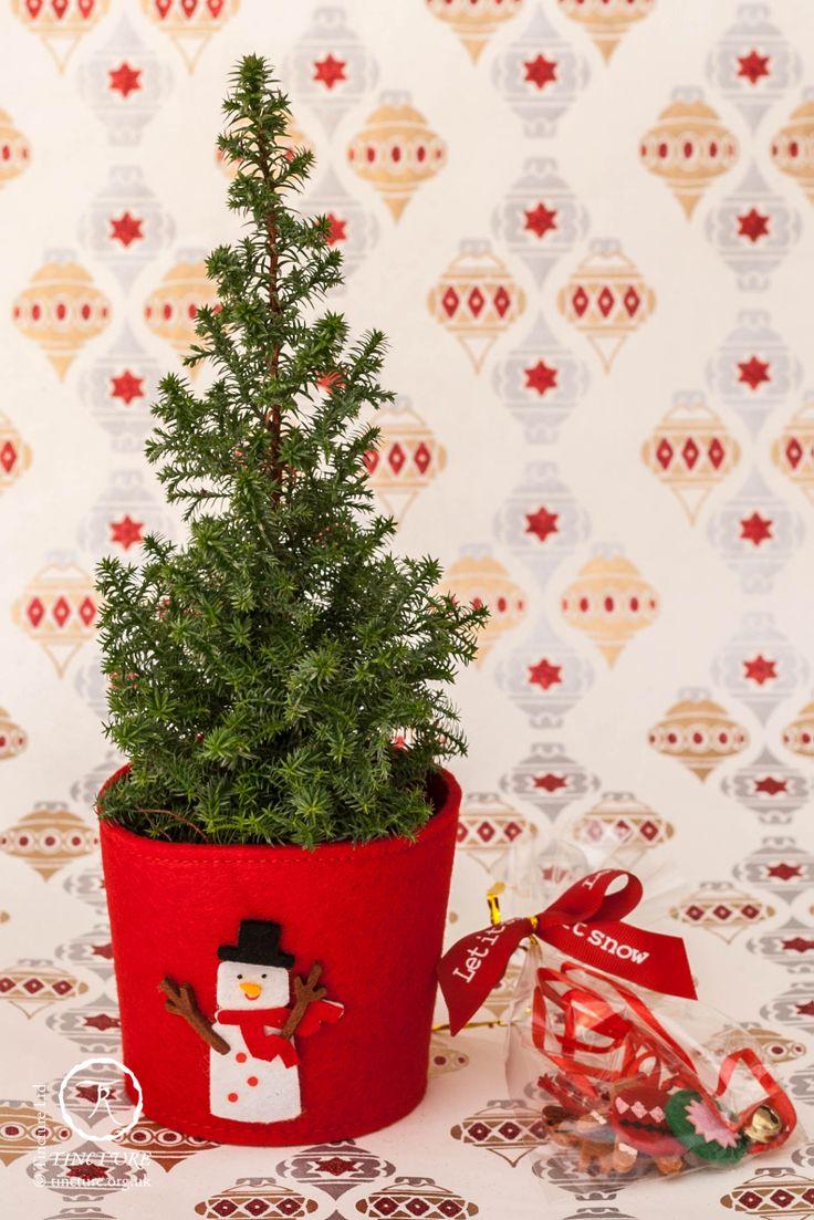 Sainsbury S Cake Decorations Mini Carrots : Christmas Tree Decorations Sainsburys Christmas Decorating
