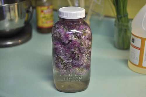 Chive Blossom Vinegar! i have little baby chives growing right now...