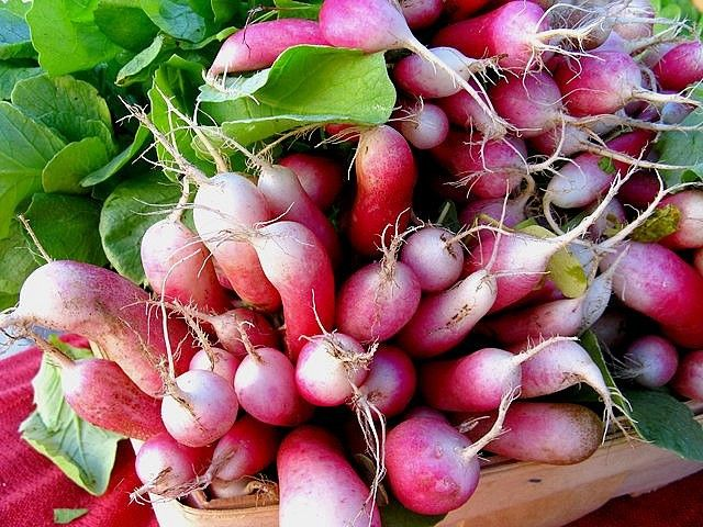 Braised Radishes with Wilted Arugula – Vermont Organic Farm | Cedar ...