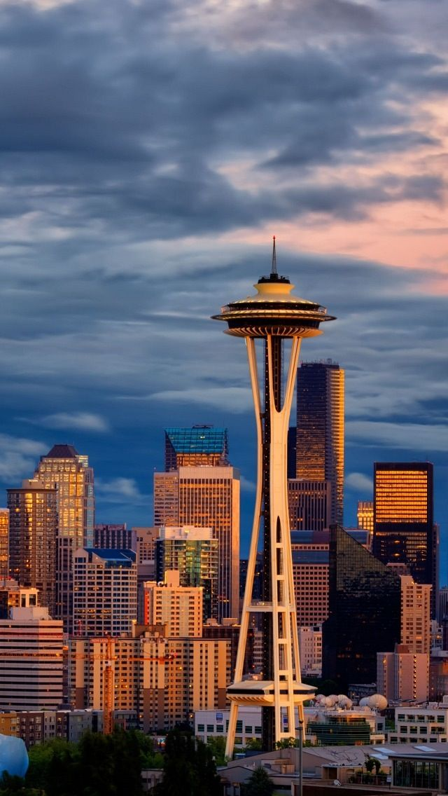 the space needle is the icon of seattle when my family first moved to