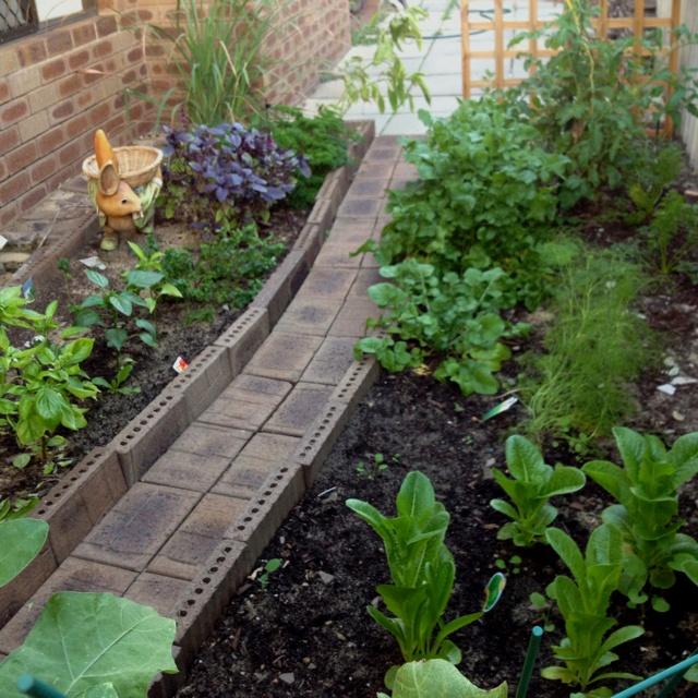 Small space veggie and herb garden garden pinterest - Herb gardens for small spaces gallery ...