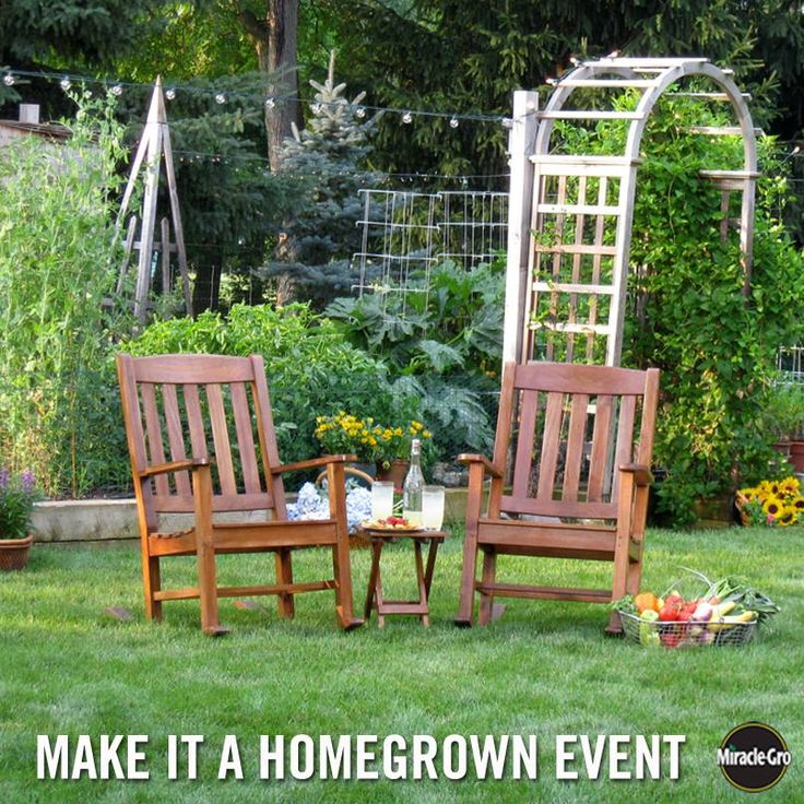 Starting a garden in your backyard