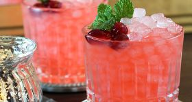 Cranberry Ginger Fizz Cocktail | Drinks | Pinterest