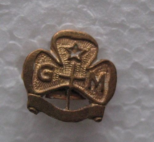 More like this: girl guides , badges and miniatures .: pinterest.com/pin/547891110889255192