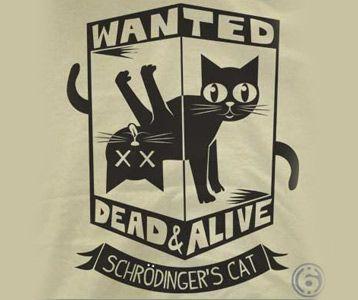 Schrodinger's Cat T-Shirt – Big Bang Theory Schrodinger's Shirt