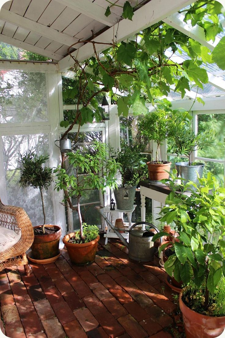 Would LOVE an out shed/greenhouse just like this.