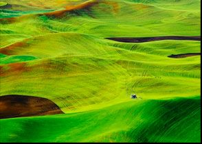 Palouse - Eastern WA by Richard Duval Images