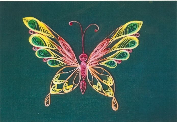 butterfly quilled pinterest