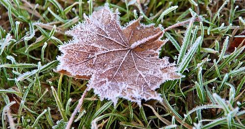 Autumn chill | Seasons | Pinterest