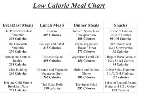 Healthy low calorie meals on the go