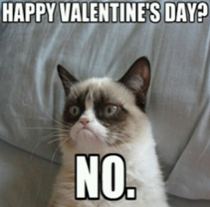grumpy cat valentines day sayings