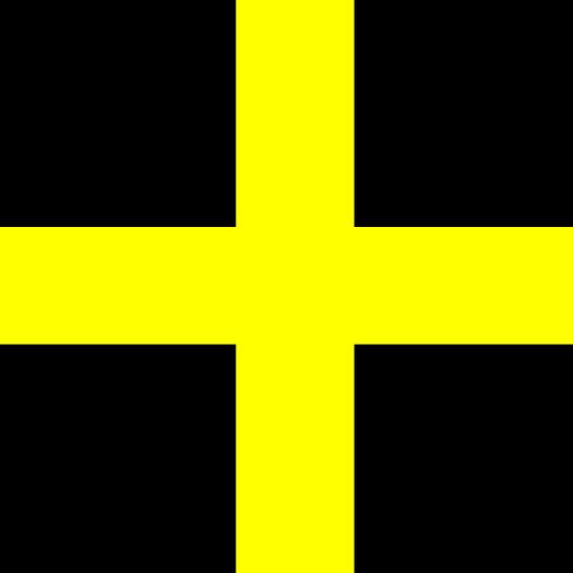 st davids day flag