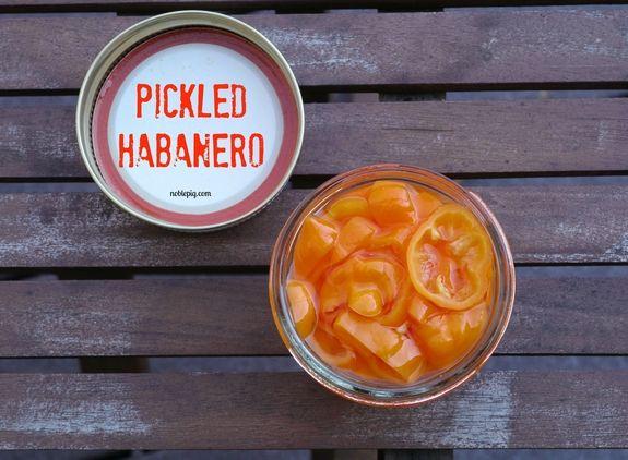 Cheesy White Bean Dip With Smoked Paprika Toasts Recipes — Dishmaps