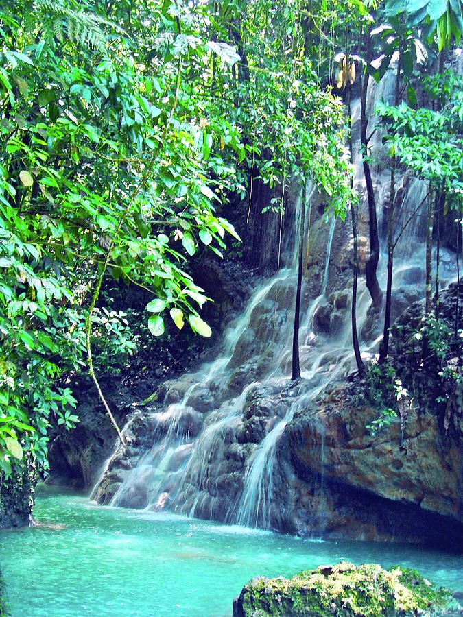 Sommerset Falls Jamaica Photograph by Carey Chen - Sommerset Falls Jamaica Fine Art Prints and Posters for Sale