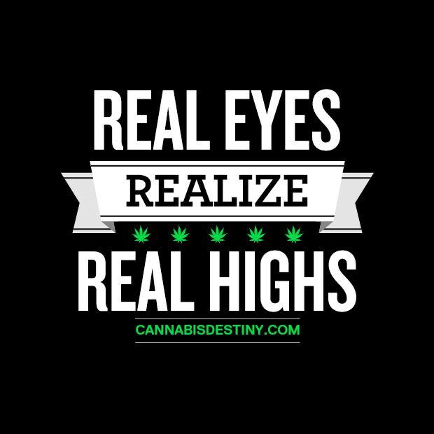 Real Eyes, Realize, Real Highs real marijuana redeyes