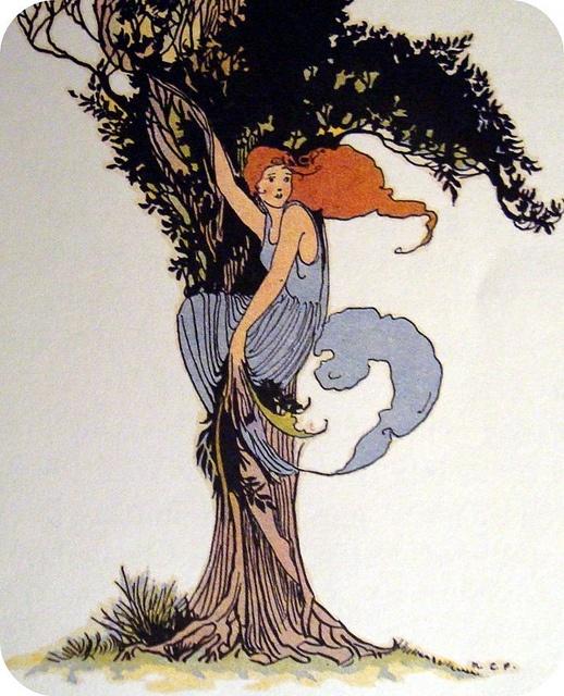 Daphne Laurel Tree Tattoo