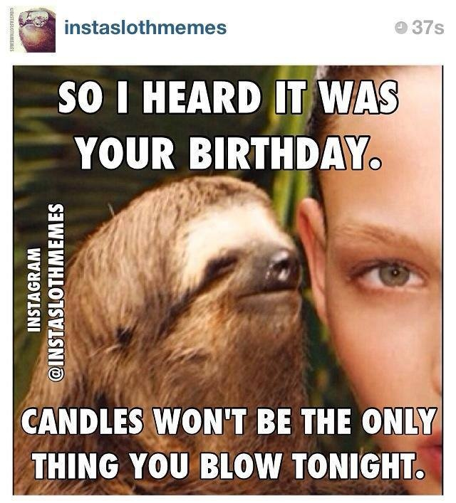 Happy birthday sloth meme - photo#13