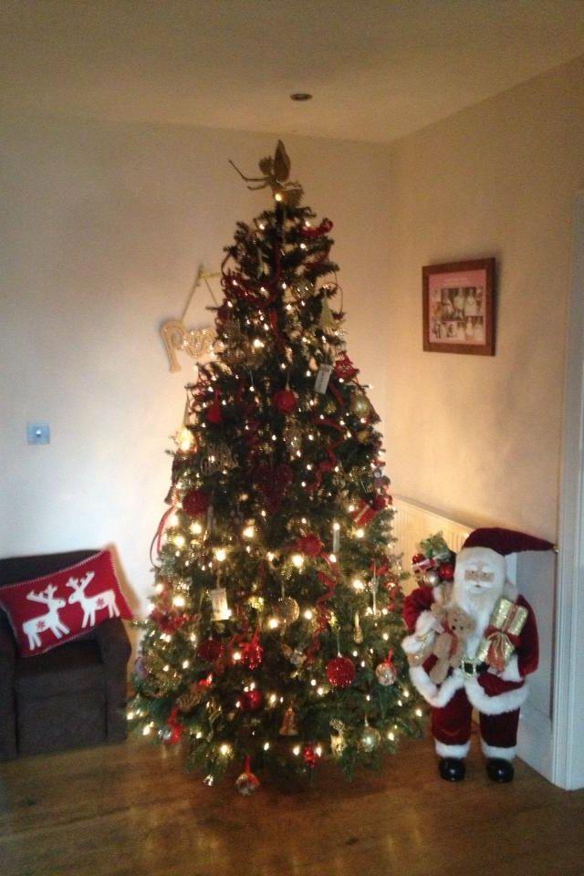 Pinterest christmas tree decorating ideas photograph chris for Christmas home decorations pinterest