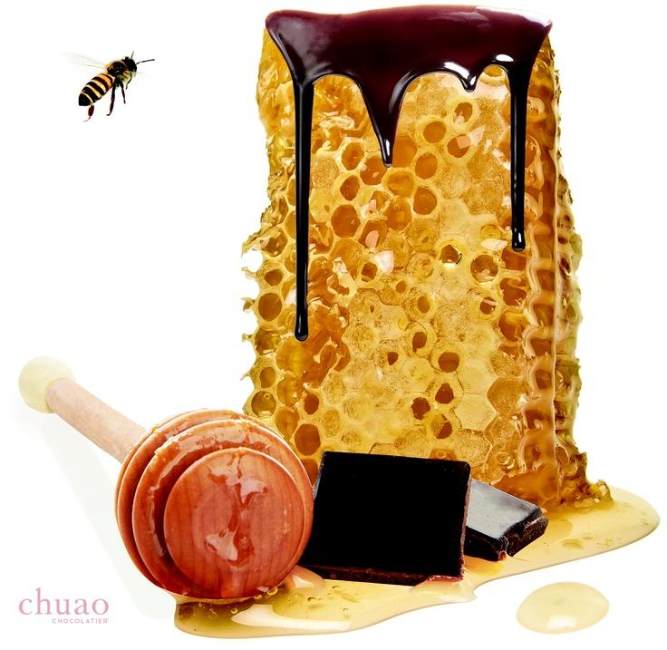 honeycomb bar - chuao chocolatier | Gifts for the Hostess! | Pinterest