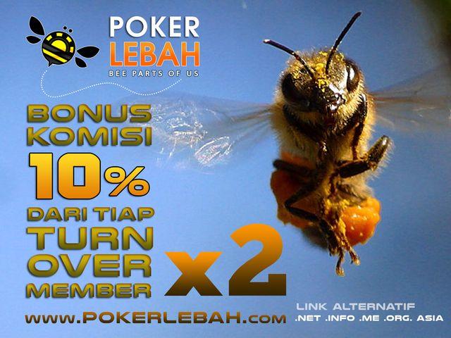 Image Result For Pokerboya