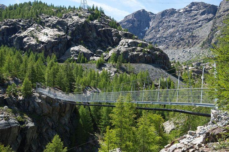 Glacier Garden Dossen Swiss Cities And Destinations