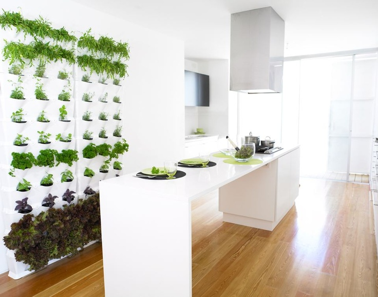 indoor vertical kitchen herb garden jardinagem pinterest