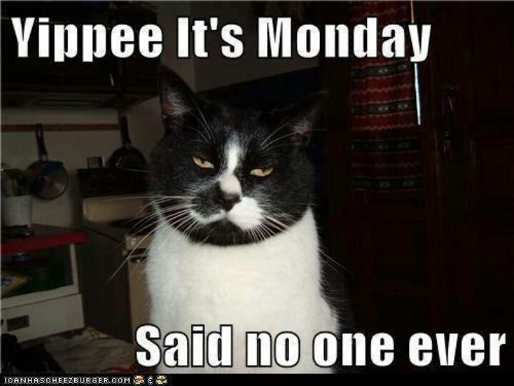 Tuxie Monday