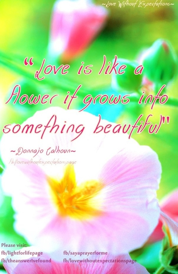 Quotes About Love Growing Like Flowers : Inspirational Quotes About Flowers Blooming. QuotesGram