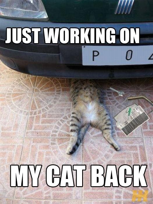 Truck Memes and Mechanic Moments - Page 3 - Ford ...
