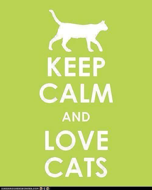 And Love Cats | Keep Calm... | Pinterest