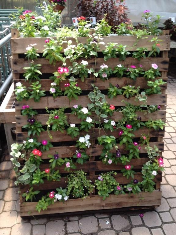 Pallet garden wood pallets pinterest for Balcony vertical garden ideas
