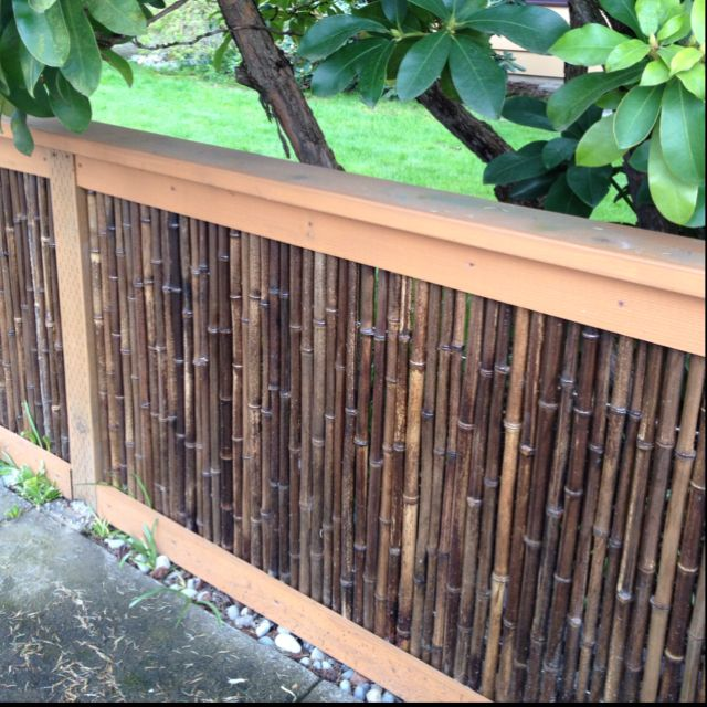 Bamboo Patio Fence Cool Bamboo Fence For Asian Inspired Garden Fence .