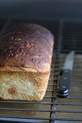 Homemade cinnamon bread. | Sweet Breads.... | Pinterest