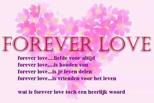 Forever Love Liefdes Teksten Pinterest