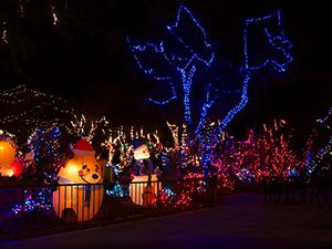 brookfield zoo lights chicago IL 2013 | Holiday Magic Brookfield Zoo ...