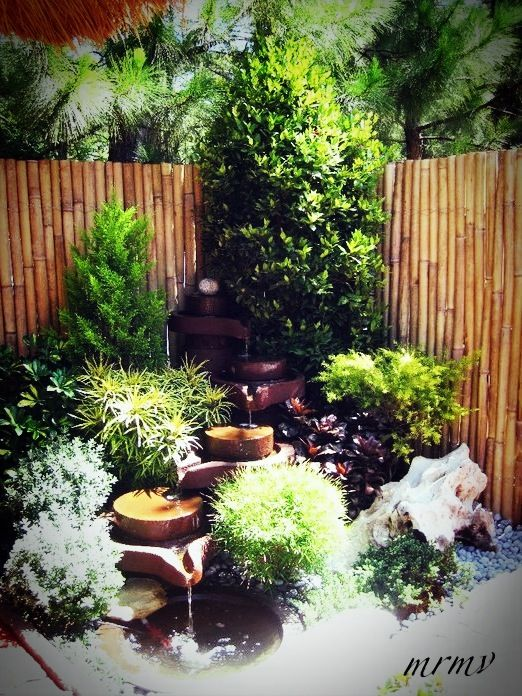 landscaping ideas...