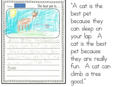 essay on my pet dog for grade 1
