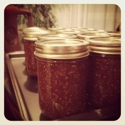 Maxine will teach you how to make delicious homemade jams and jellies for $5 to support the WFP! #Raise5