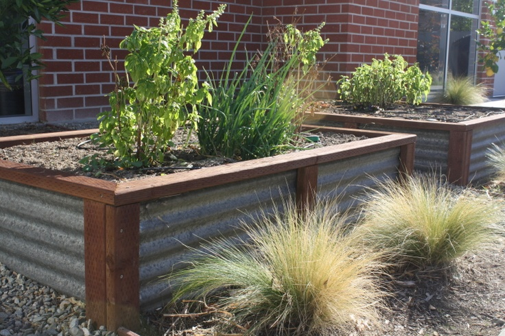 More ideas corrugated metal garden box garden planter for Boxed garden designs