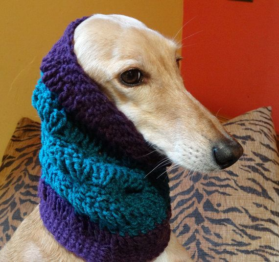 Snoodie hoodie doggy not looking impressed! | RESERVED Handmade Crochet Saluki Sighthound Snood by StolaStore
