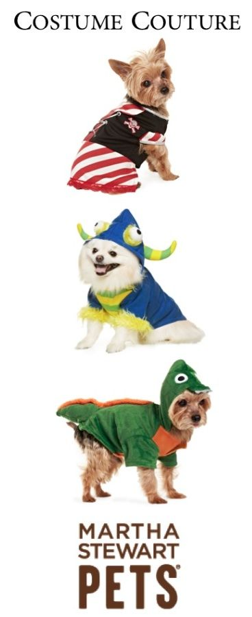 Does your pet have his or her Halloween costume yet? #marthastewartpets #petsmart