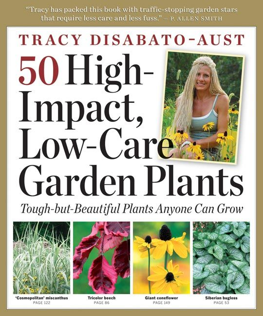 50 High-Impact, Low-Care Garden Plants from Timber Press