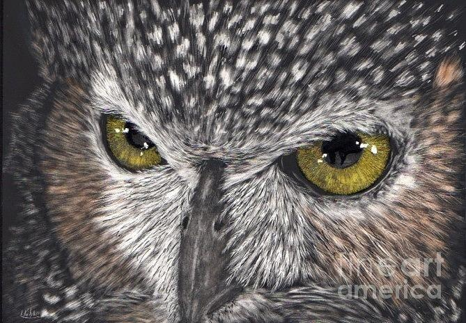 Owl Eyes PaintingOwl Eyes Paintings