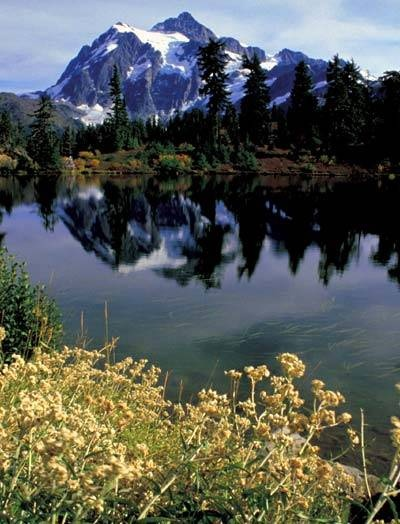 Washington State - Home~Sweet~Home ♥