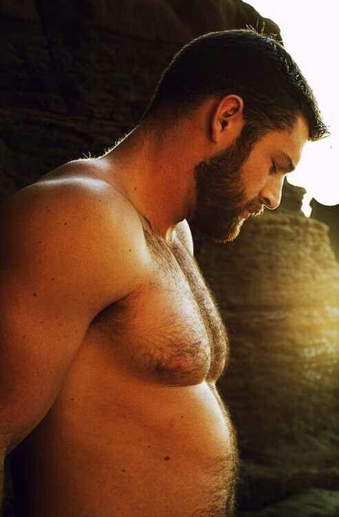 Hairy Bear Men Beards