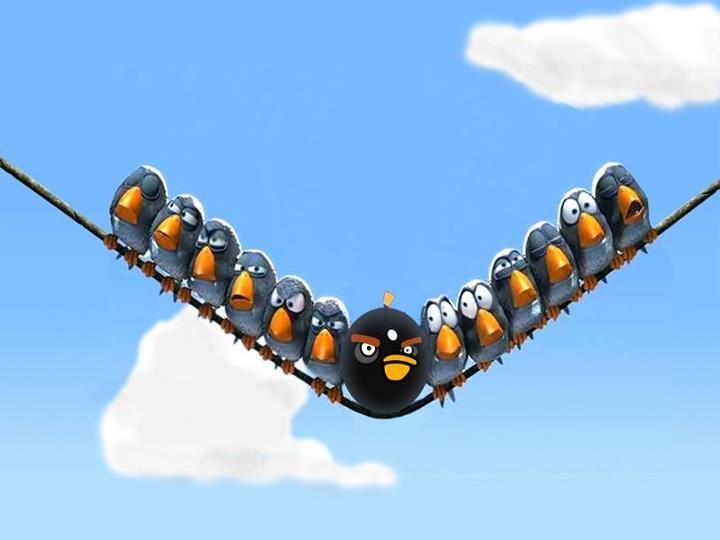 Pixar Bird Cartoon