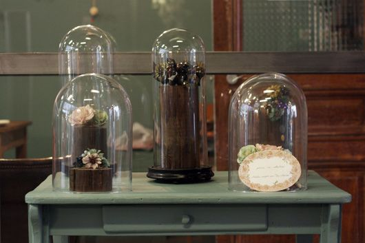 Cloches en verre ou