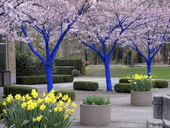 Bright Painting Ideas for Decorating Trees, Creative Backyard Ideas